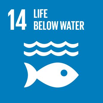 E_SDG goals_icons-individual-rgb-14